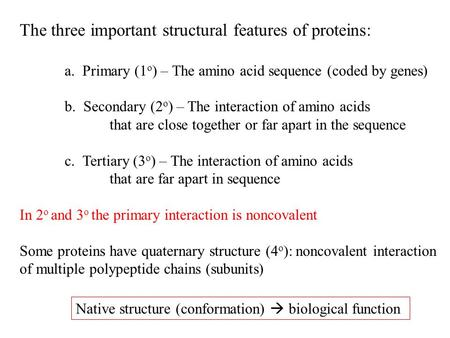 The three important structural features of proteins: a. Primary (1 o ) – The amino acid sequence (coded by genes) b. Secondary (2 o ) – The interaction.