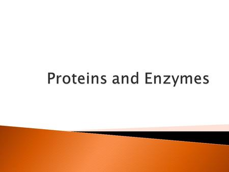  Proteins have many different functions in the body  Structure – proteins help provide structure and support, make up muscles and bones.
