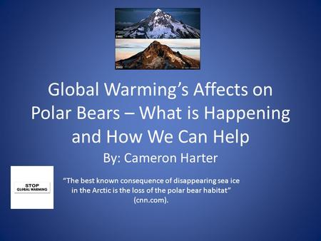 "Global Warming's Affects on Polar Bears – What is Happening and How We Can Help By: Cameron Harter ""The best known consequence of disappearing sea ice."