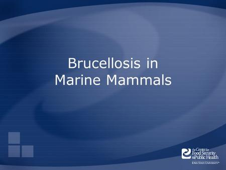 Brucellosis in Marine Mammals. Overview Organism History Epidemiology Transmission Disease in Humans Disease in Animals Prevention and Control Actions.