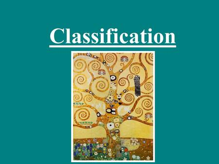 Classification. What does classification mean? Write your answer using a complete sentence.