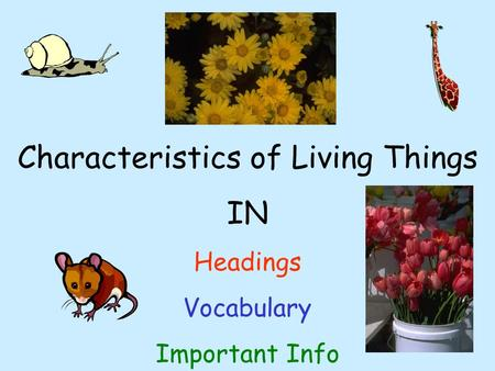 Characteristics of Living Things IN Headings Vocabulary Important Info.