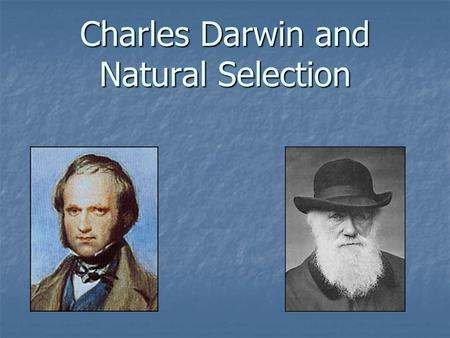 charles darwin natural selection 2008-11-19 darwin & evolution by natural selection warbler finch ground finches tree finches cactus eater insect eaters seed eaters bud eater charles darwin proposed a way how evolution works how did creatures change over time by.