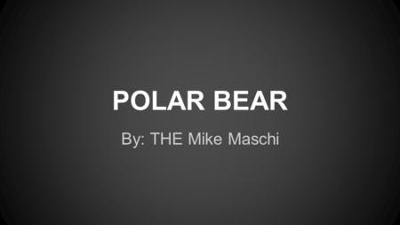 POLAR BEAR By: THE Mike Maschi. Classification ●Kingdom- Animalia ●Phylum- Chordata ●Class- Mammalia ●Order- Carnivora ●Family- Ursidae ●Genus- Ursus.