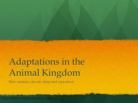 Adaptations in the Animal Kingdom How animals can eat, sleep and reproduce © Copyright 2014- all rights reserved www.cpalms.org.