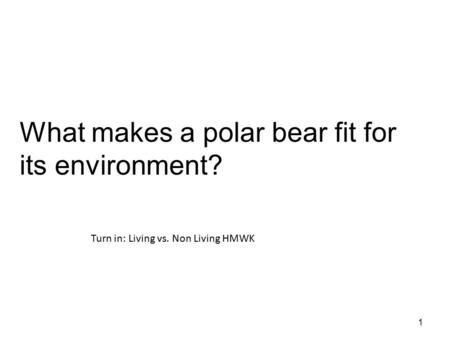 1 What makes a polar bear fit for its environment? Turn in: Living vs. Non Living HMWK.
