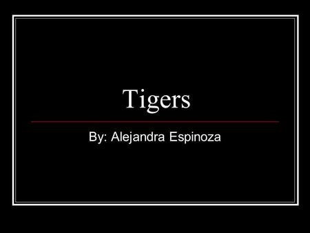 Tigers By: Alejandra Espinoza. Basic Info There are 5 different kinds of tiger which are still alive today, which are: Siberian, Indochinese, South Bengal,