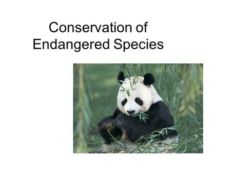 Conservation of Endangered Species. The Endangered Species Preservation Act was passed in 1966. This act was replaced in 1969 with the Endangered Species.