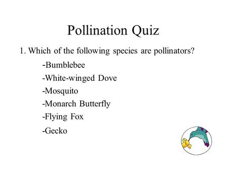 Pollination Quiz 1.Which of the following species are pollinators? - Bumblebee -White-winged Dove -Mosquito -Monarch Butterfly -Flying Fox -Gecko.