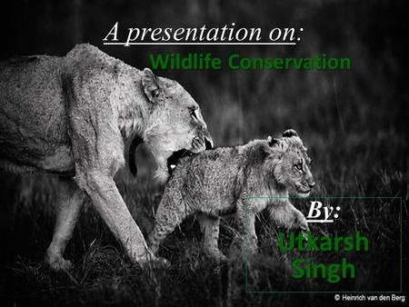 A presentation on: Wildlife Conservation