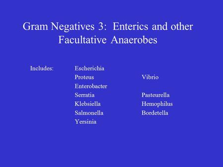 Gram Negatives 3: Enterics and other Facultative Anaerobes Includes:Escherichia ProteusVibrio Enterobacter SerratiaPasteurella KlebsiellaHemophilus SalmonellaBordetella.