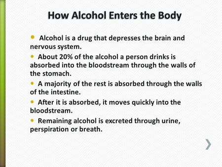 Alcohol is a drug that depresses the brain and nervous system. About 20% of the alcohol a person drinks is absorbed into the bloodstream through the walls.