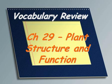 Ch 29 – Plant Structure and Function