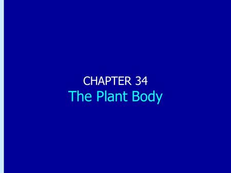 Chapter 34: The Plant Body CHAPTER 34 The Plant Body.