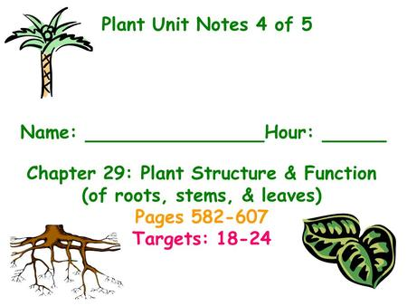 Plant Unit Notes 4 of 5 Name: 					Hour: