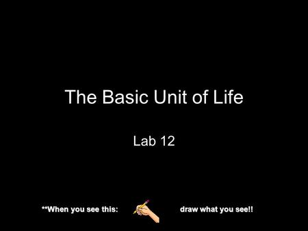 The Basic Unit of Life Lab 12 **When you see this: draw what you see!!