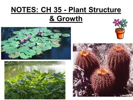 NOTES: CH 35 - Plant Structure & Growth. In their evolutionary journey, plants adapted to the problems of a terrestrial existence as they moved from water.