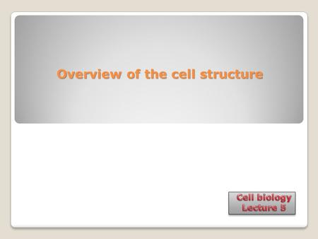 Overview of the cell structure Overview of the cell structure.