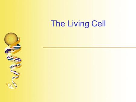 "The Living Cell.  ""Cell"" –Named by Robert Hooke who used microscope to look at cork (1663) –Described by Anton van Leeuwenhoek who designed his own microscope."