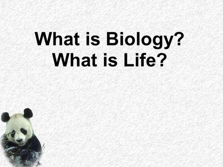 What is Biology? What is Life?. All this creates a Question: What is Life?