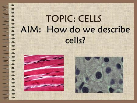 AIM: How do we describe cells?