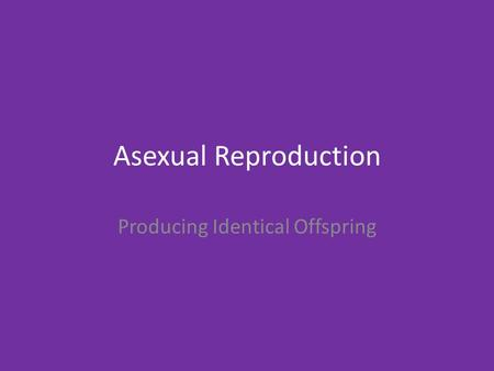 Asexual Reproduction Producing Identical Offspring.