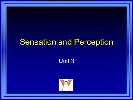 Sensation and Perception Unit 3. Copyright © 2011 Pearson Education, Inc. All rights reserved. Sensation Sensation - the activation of receptors in the.