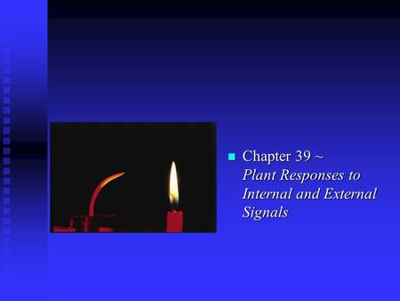 N Chapter 39 ~ Plant Responses to Internal and External Signals.