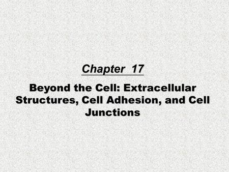 Chapter 17 Beyond the Cell: Extracellular Structures, Cell Adhesion, and Cell Junctions.