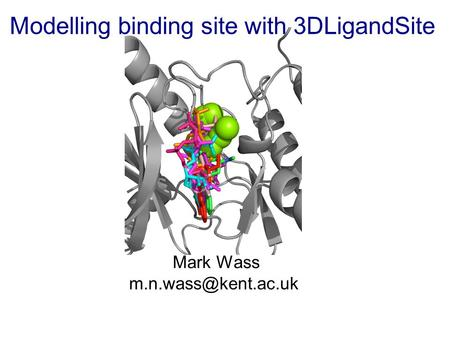 Modelling binding site with 3DLigandSite Mark Wass