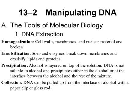 13–2Manipulating DNA A.The Tools of Molecular Biology 1.DNA Extraction Homogenization: Cell walls, membranes, and nuclear material are broken Emulsification: