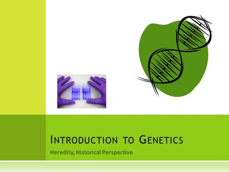 Heredity, Historical Perspective I NTRODUCTION TO G ENETICS.