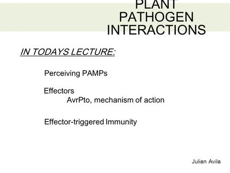 Julian Avila PLANT PATHOGEN INTERACTIONS IN TODAYS LECTURE: Effector-triggered Immunity Perceiving PAMPs Effectors AvrPto, mechanism of action.