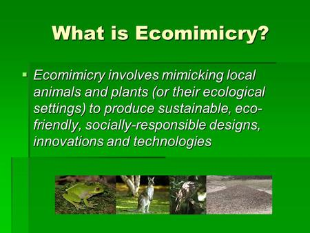 What is Ecomimicry?  Ecomimicry involves mimicking local animals and plants (or their ecological settings) to produce sustainable, eco- friendly, socially-responsible.