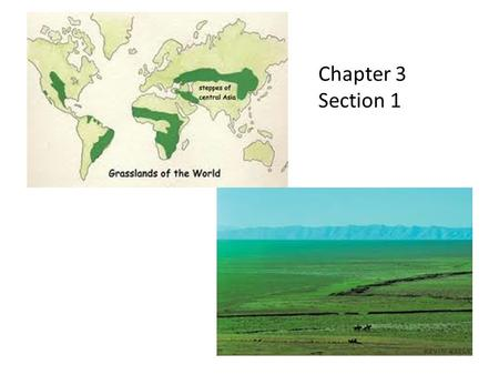 Chapter 3 Section 1. Why would the Arabian Peninsula be well suited for world trade?
