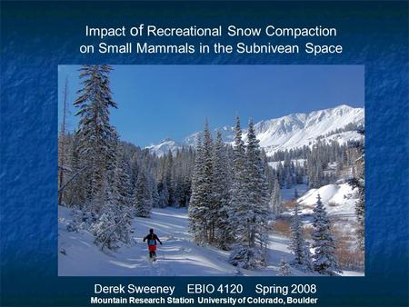 Impact of Recreational Snow Compaction on Small Mammals in the Subnivean Space Derek Sweeney EBIO 4120 Spring 2008 Mountain Research Station University.