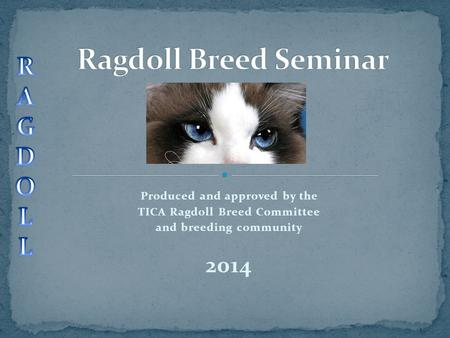 Produced and approved by the TICA Ragdoll Breed Committee and breeding community 2014.