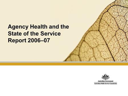 Agency Health and the State of the Service Report 2006–07.