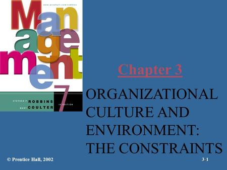 Chapter 3 ORGANIZATIONAL CULTURE AND ENVIRONMENT: THE CONSTRAINTS © Prentice Hall, 20023-1.
