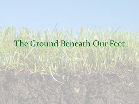 The Ground Beneath Our Feet. What Makes Up Healthy Soil? Mineral fragments, humus, air, water, and living things – Plant roots, Insects, Worms Humus –