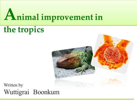 A nimal improvement in the tropics Written by Wuttigrai Boonkum.