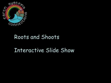 Roots and Shoots Interactive Slide Show. Roots of the world… p Come in all s H ap Es and s i z e s !
