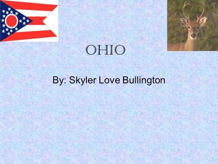 Ohio By: Skyler Love Bullington. Overview In 2007 an estimated 11.5 million people lived within Ohio 44,828 square miles. That means 99 people live per.