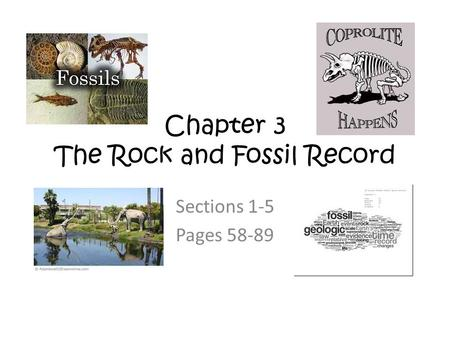 Chapter 3 The Rock and Fossil Record Sections 1-5 Pages 58-89.