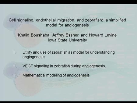 Integrating Ecological Models and