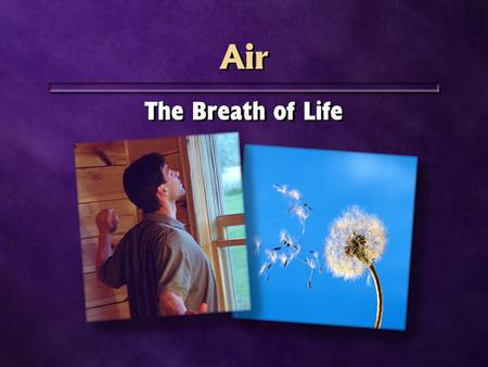 Air The Breath of Life. 28,000 feet 28,000 feet Weeks without food Days without water Minutes without oxygen Weeks without food Days without water Minutes.