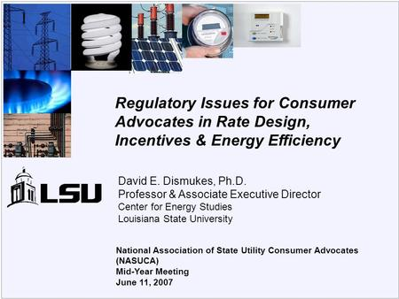 Center for Energy Studies National Association of State Utility Consumer Advocates (NASUCA) Mid-Year Meeting June 11, 2007 Regulatory Issues for Consumer.