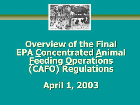 Overview of the Final EPA Concentrated Animal Feeding Operations (CAFO) Regulations April 1, 2003.