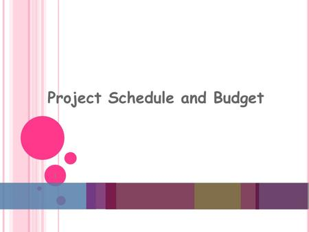 Project Schedule and Budget 1. T HE P ROJECT P LANNING F RAMEWORK 2.