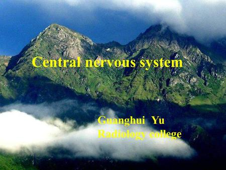 Central nervous system Guanghui Yu Radiology college.
